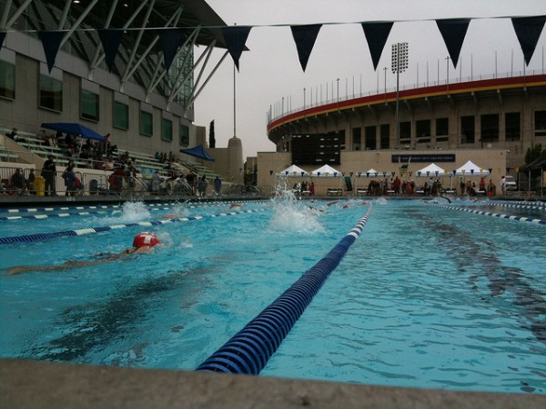 4 Best Public Swimming Pools in Los Angeles | Nerve Rush