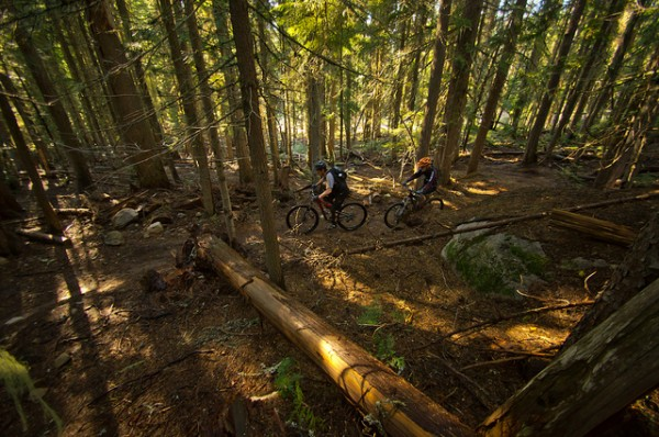 larch loop mountain biking trail near seattle
