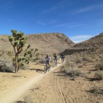 5 Best Mountain Biking Trails Near Las Vegas
