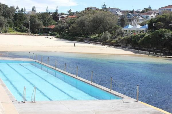 clovelly beach top 5 beaches in sydney