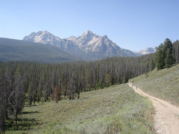 best mountain biking trails elk meadow