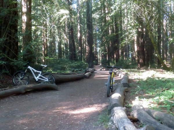 5 best mountain biking trails in san francisco joaquin miller