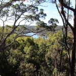 5 Best Mountain Biking Trails in Sydney