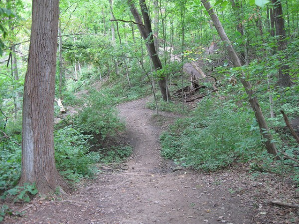 rock cut state park 5 best day hikes near chicago