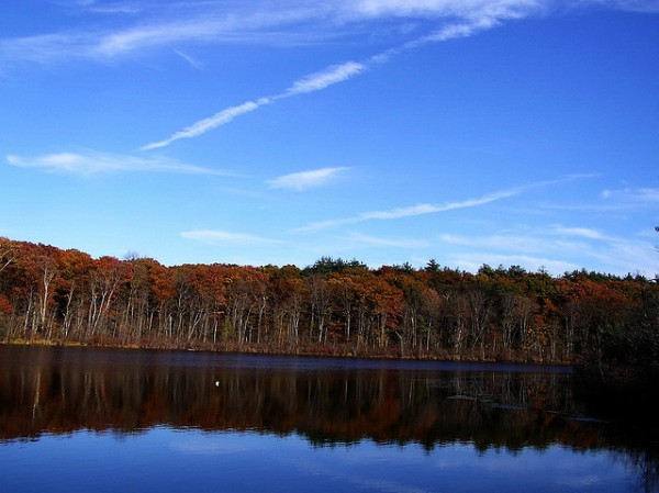 stony brook reservation 5 best cycling routes in boston