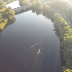 Community Rowing in Boston [Aerial Videography]
