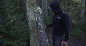 Nature Made Snowboard