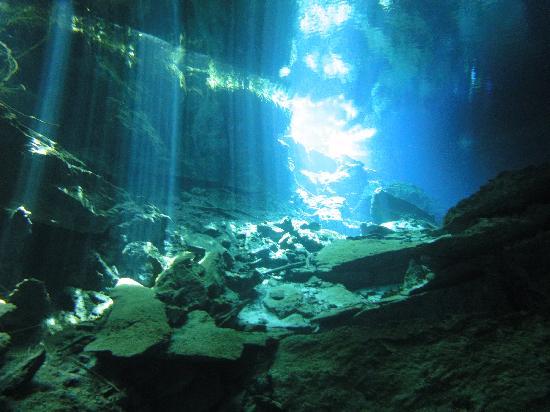 cenotes-scuba-diving